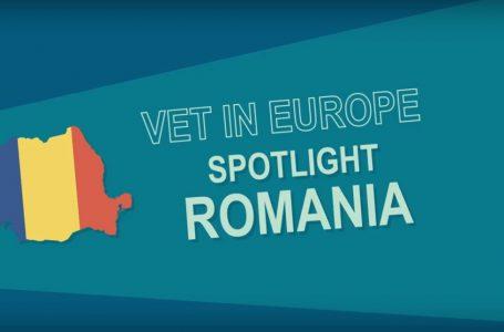 سیستم آموزش فنی و حرفه ای در رومانی
